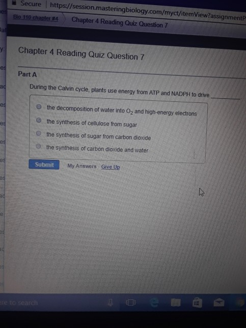 mastering biology answers chapter 4