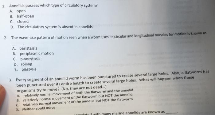 open type circulatory system