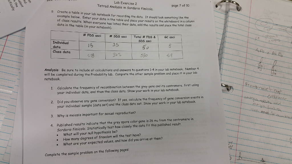 Lab Exercise 2 Page 7 of 10