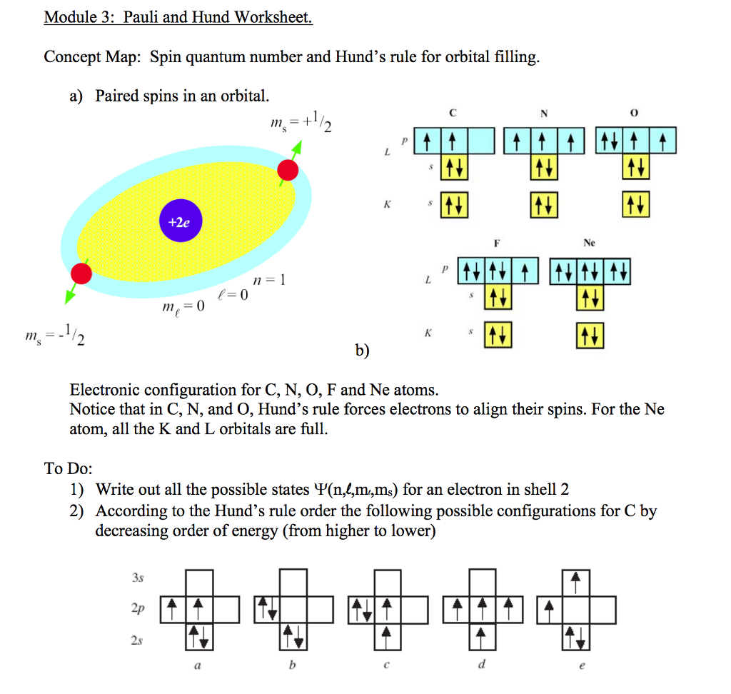 Worksheets Quantum Numbers Worksheet solved concept map spin quantum number and hunds rule f module 3 pauli hund worksheet hunds