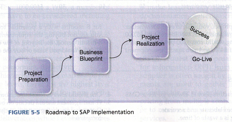 Solved the roadmap to sap implementation is shown below i nibco established all project standards and procedures to make sure that project team members operate in an effective manner during the implementation malvernweather Image collections