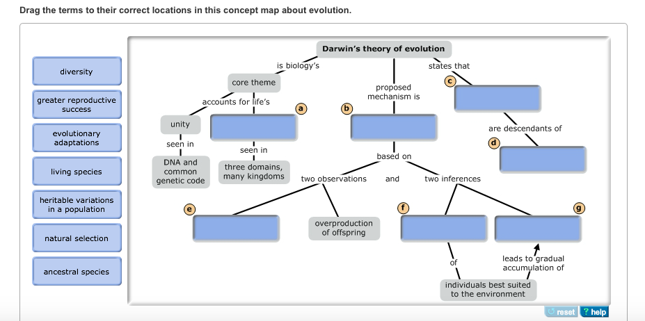Concept Map About Evolution.Solved Drag The Terms To Their Correct Locations In This