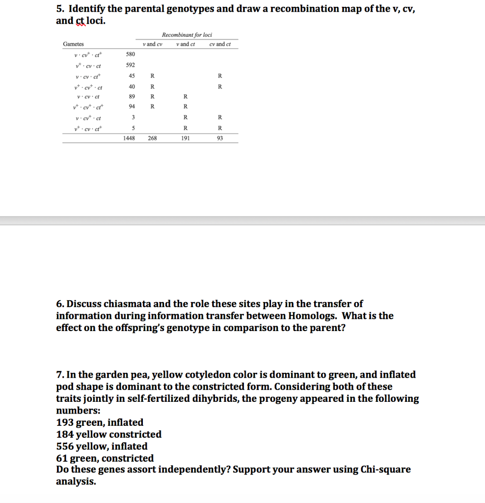 Wunderbar Npv Analysevorlage Zeitgenössisch - Entry Level Resume ...