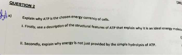describe the structure of atp also