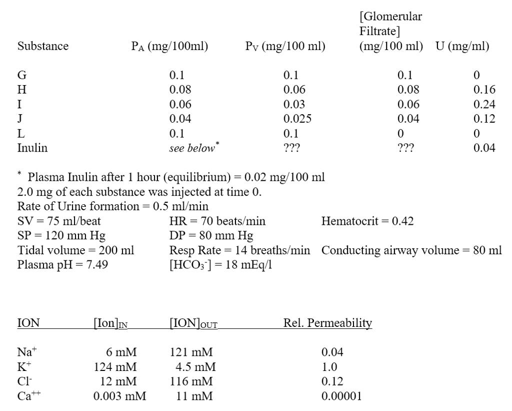 urine formation steps