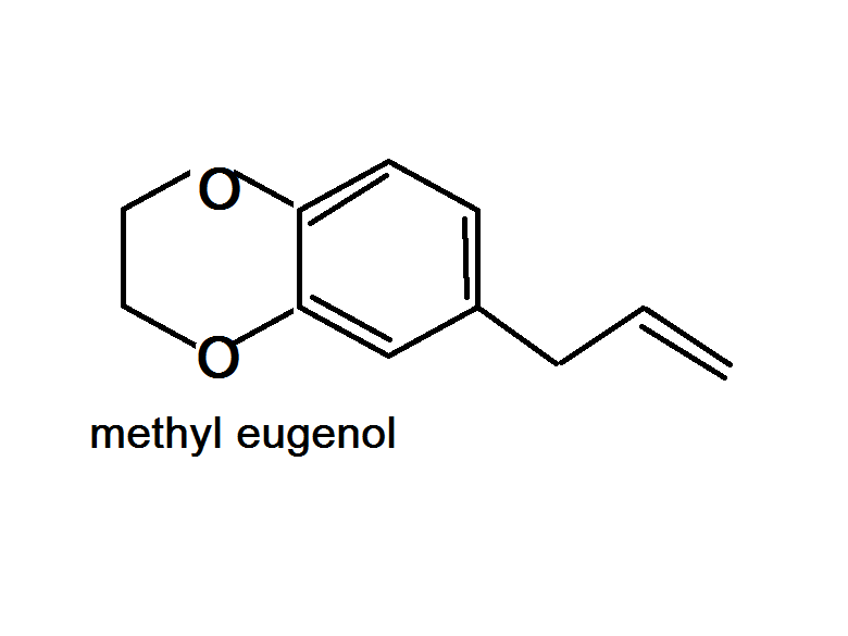 eugenol clove oil extraction