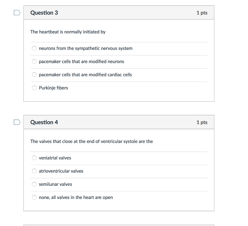 Meiosis Matching Worksheet Switchconf