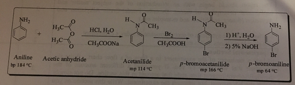 4 bromoaniline from 4 bromoacetanilide by hydrolysis The amide group is hydrolysed back to the amine to produce the final product, 4-bromoaniline to form the p-bromoacetanilide, the 5g of the acetanilide and 21ml are dissolved in separate 25ml the 4-bromoaniline was prepared by refluxing the p-bromoacetanilide with hydrochloric acid and then.