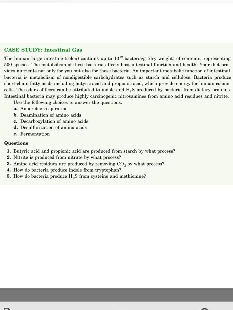 Solved Case Study Intestinal Gas The Human Large Intesti