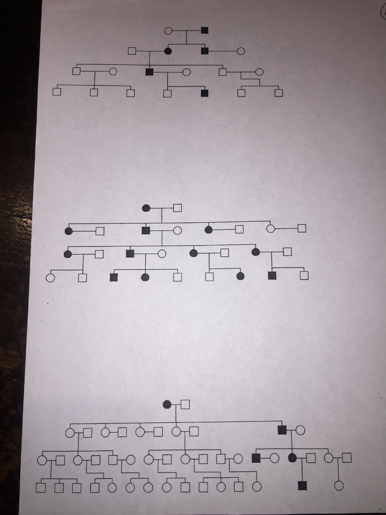 Please help me figure it out, There are only categories BC rights And what do I need to work on this loader