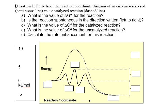 Solved Fully Label The Reaction Coordinate Diagram Of An