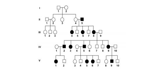 Solved: *Genetics HW Help* 1.) Human Pedigree Analysis A R ...