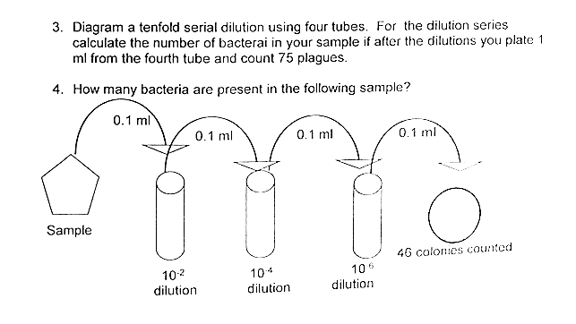Solved Diagram A Tenfold Serial Dilution Using Four Tubes