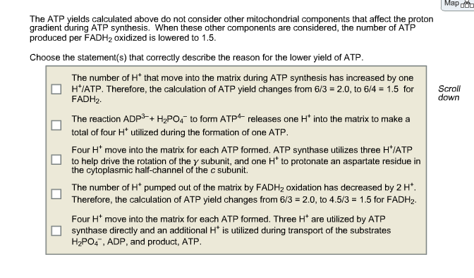 Solved The Atp Yields Calculated Above Do Not Consider Ot Chegg Com