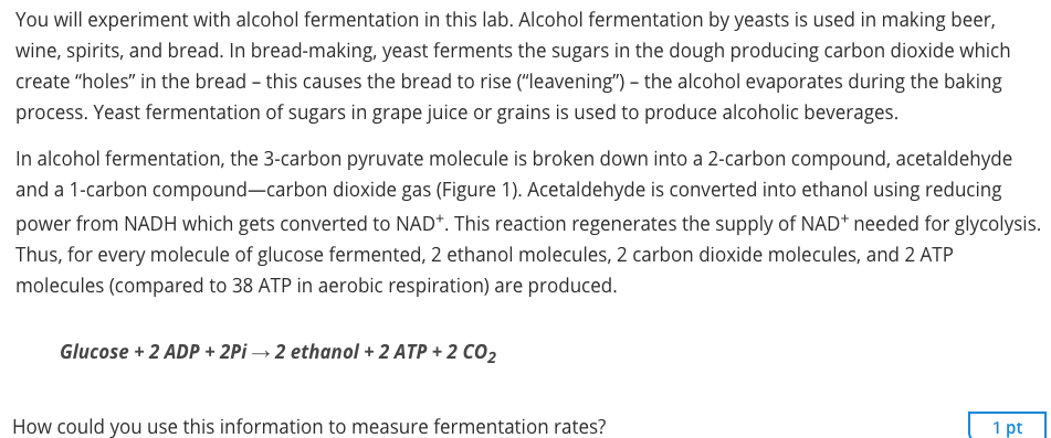 an experiment using yeast to produce alcohol and carbon dioxide Fermentation is the biological process by which yeast consumes simple sugars and releases alcohol and carbon dioxide for the most part, fermentation requires a mostly aquatic environment to occur.