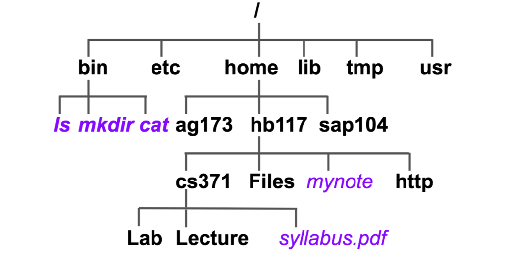 Cat Full Syllabus Pdf