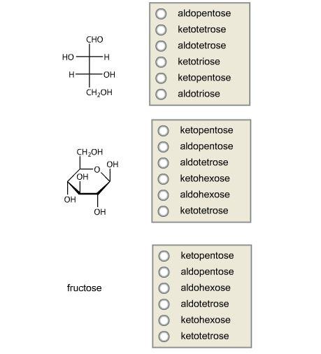Aldopentose Ketotetrose Aldotetrose Ketotriose Ket Cheggcom