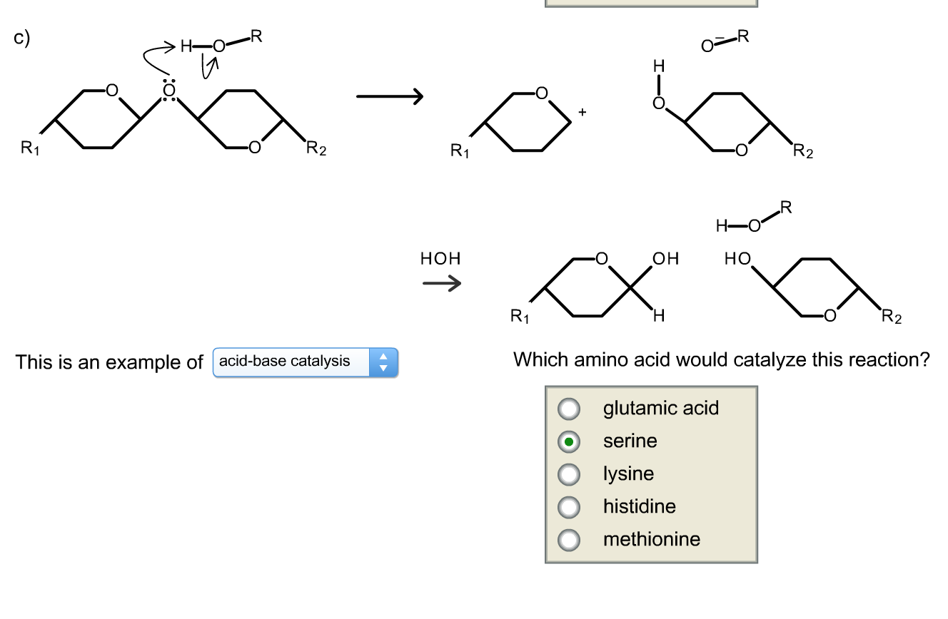 How to Find Amino Acid Sequence
