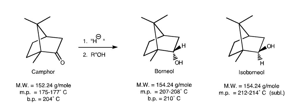 borneol and isoborneol relationship marketing