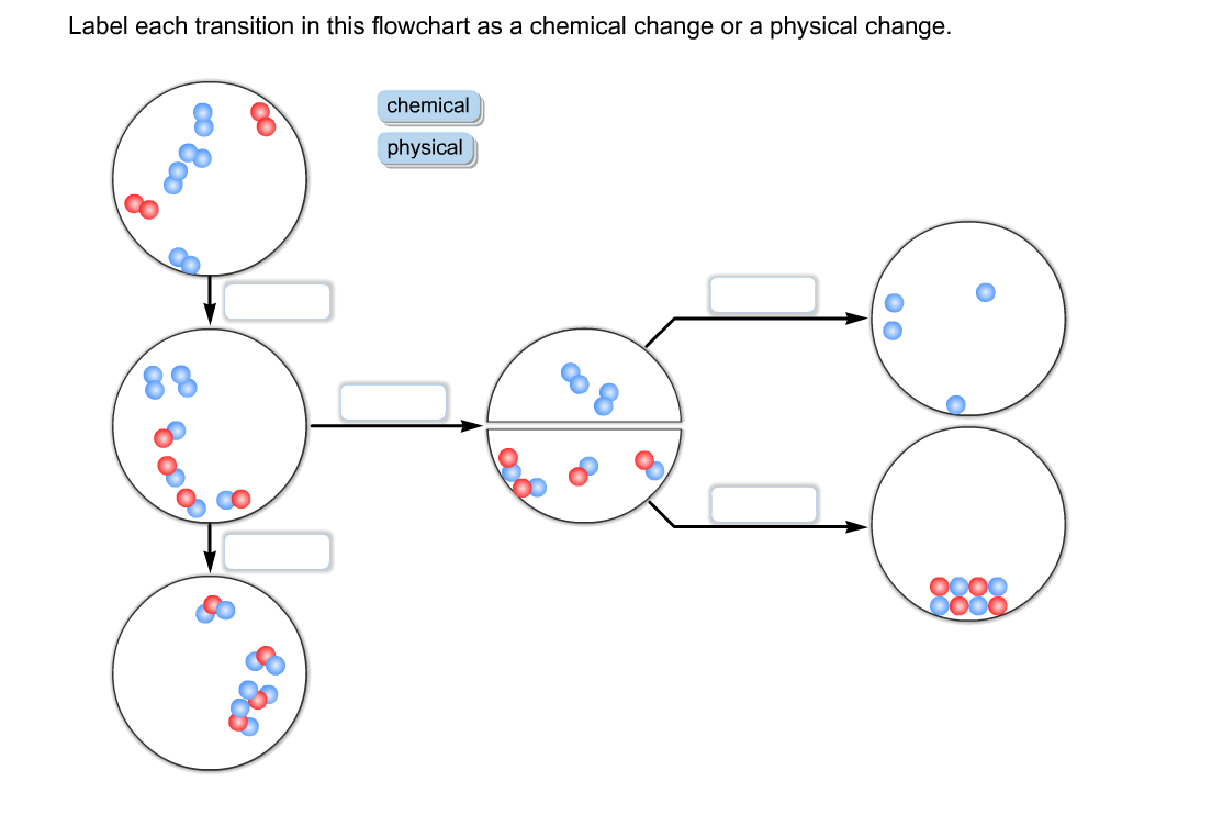 solved  label each transition in this flowchart as a chemi