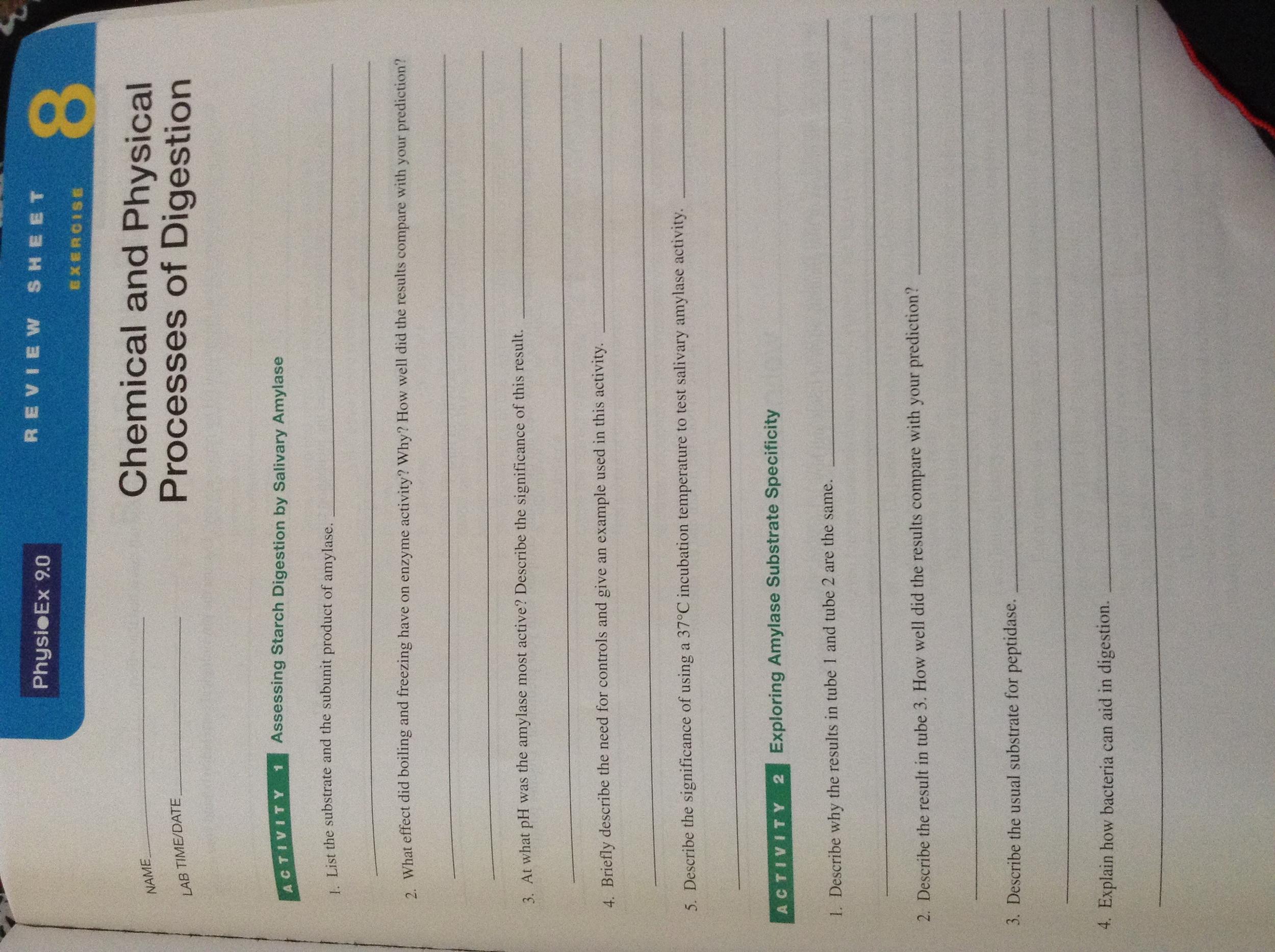 International Journal of Food Science
