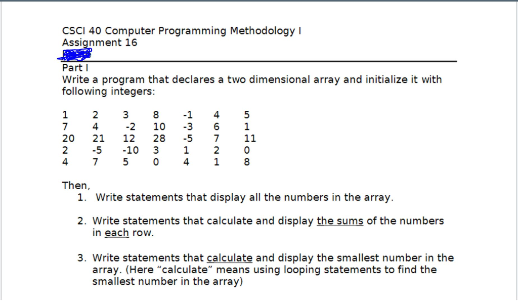 computer programming assignment statement