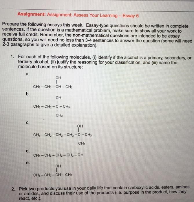 market structure essay