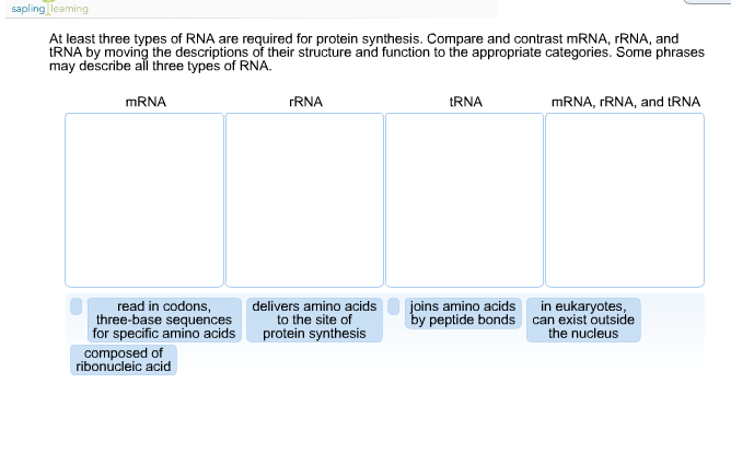 Solved at least three types of rna are required for prote Types of contrast