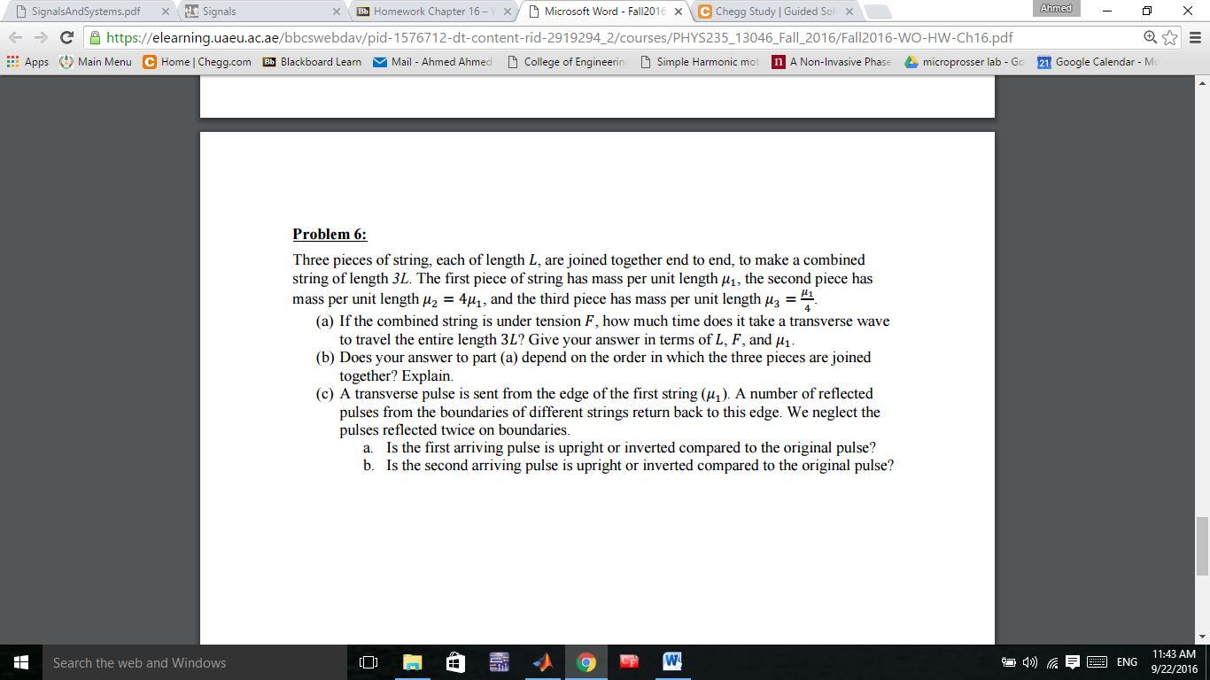 microsoft term homework