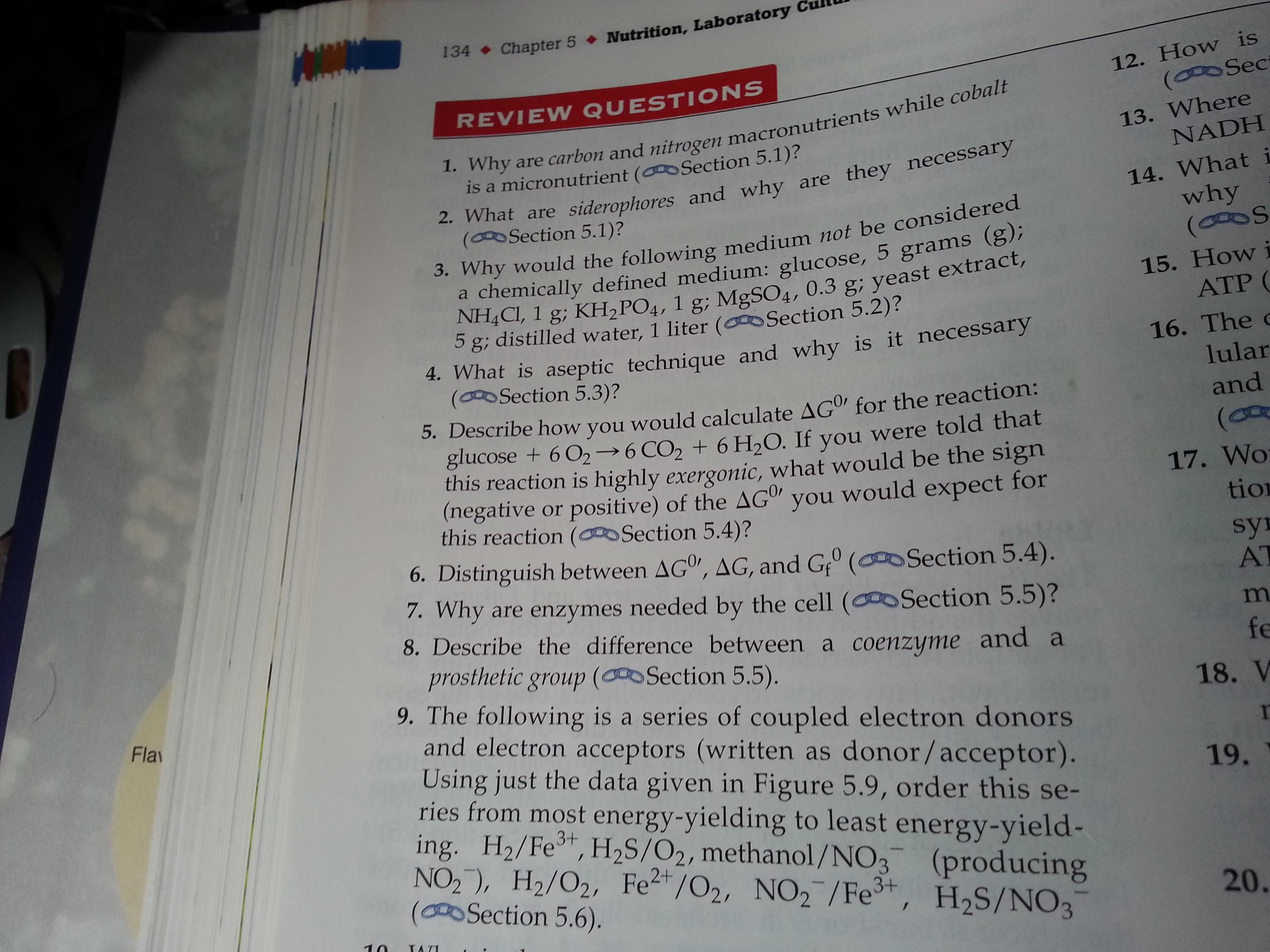 Pathogen essay??????plz help?