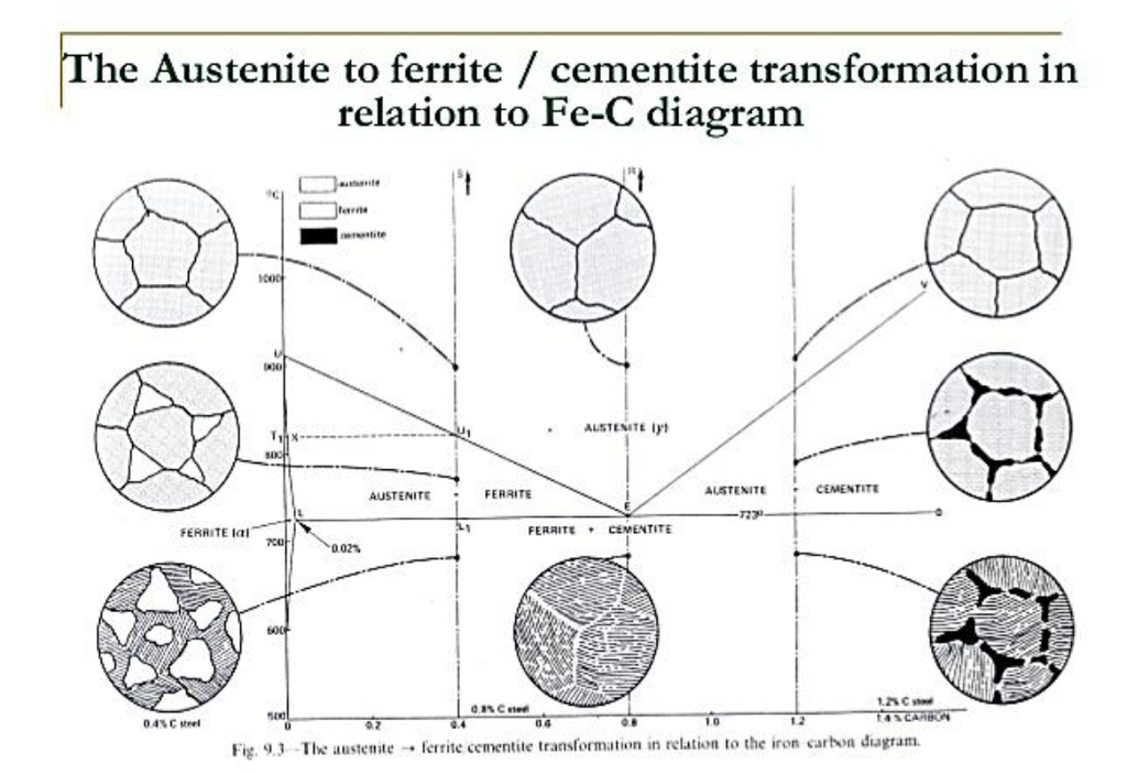 solved  compute the mass fraction of eutectoid ferrite in