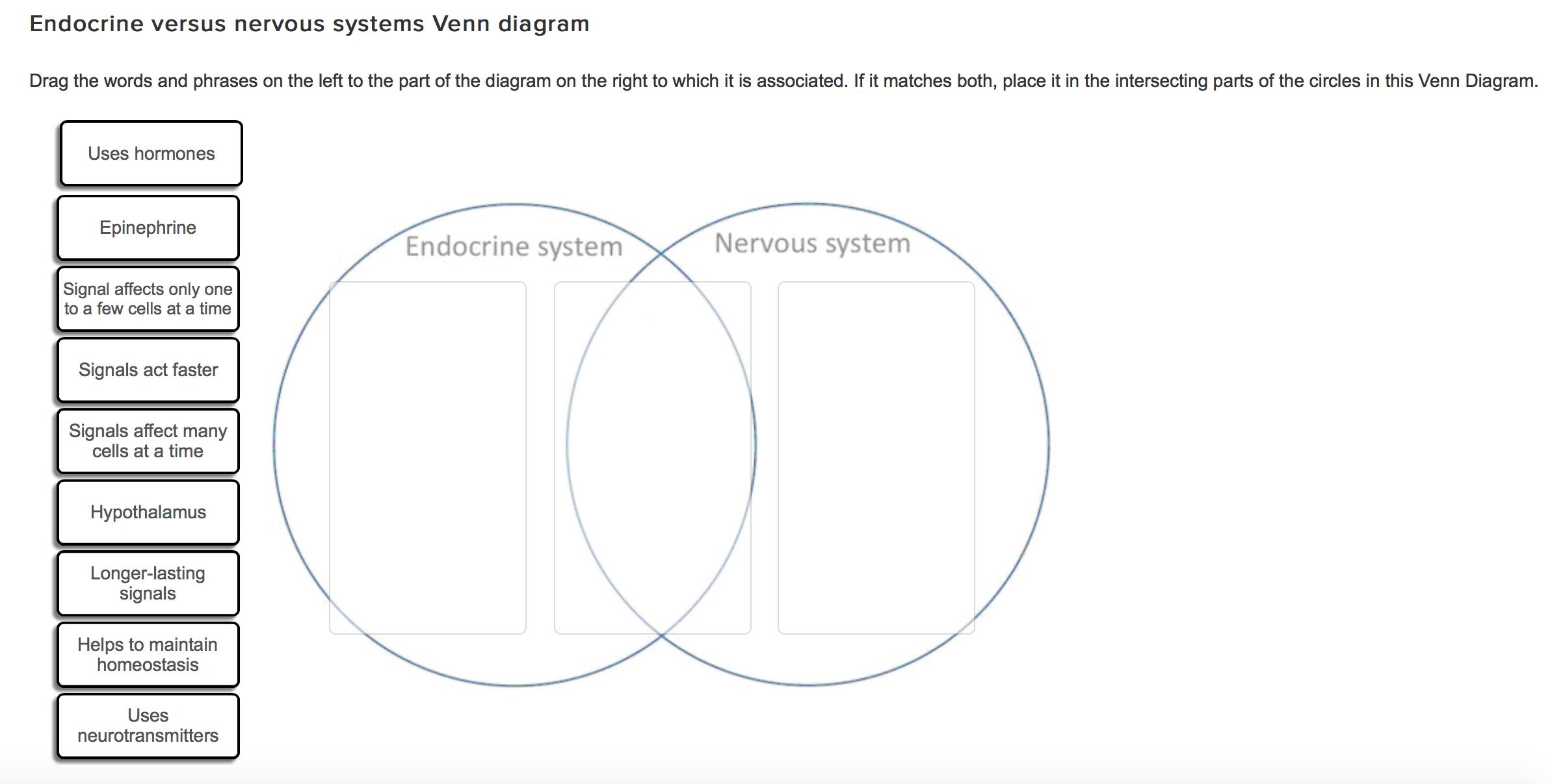 Basic Diagram Of Cellular Respiration Com