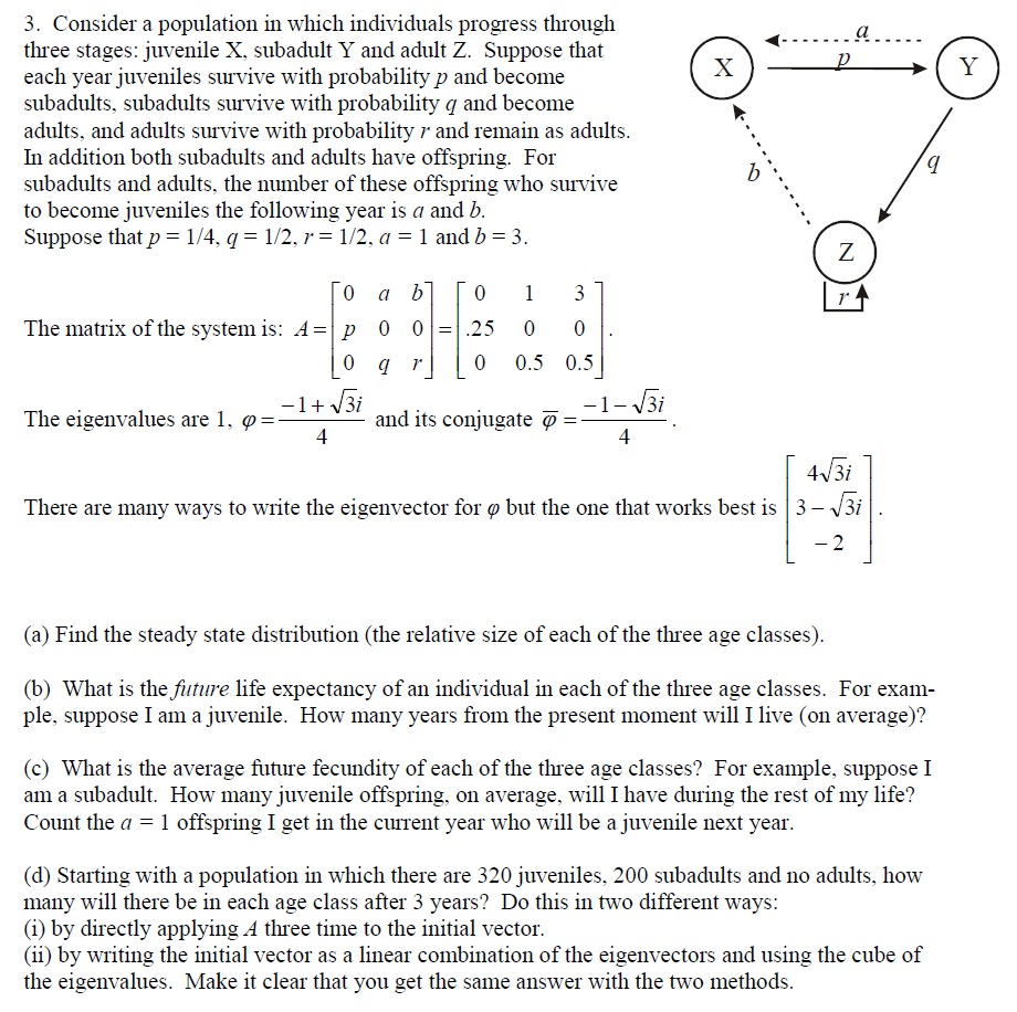 Please help me with this Math Problem?