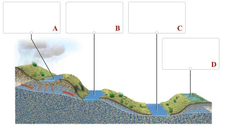 relationship between groundwater water table