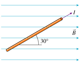 What is the magnitude of the force on the wire?