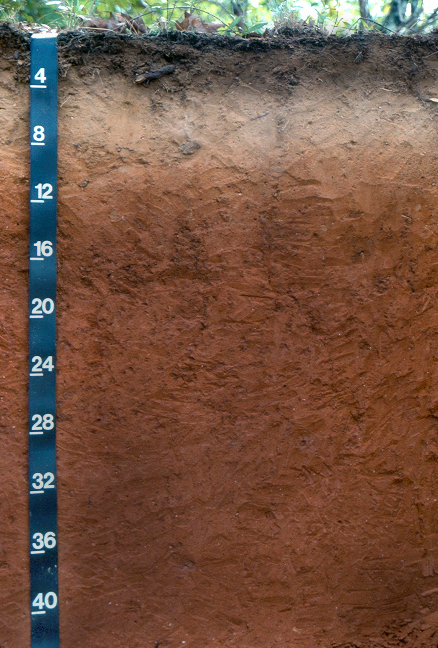 solved figure 31 3 soil profile example the depth scale. Black Bedroom Furniture Sets. Home Design Ideas