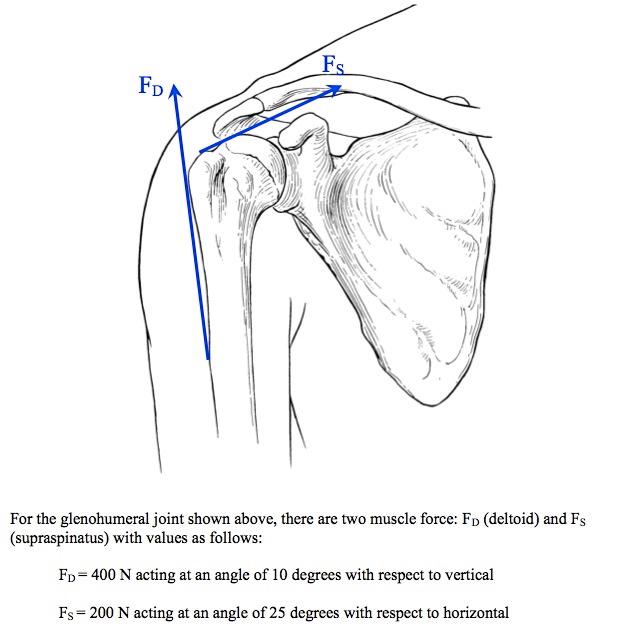 Solved: SHOW Me A Diagram Please Please Please !! Thank Yo ...