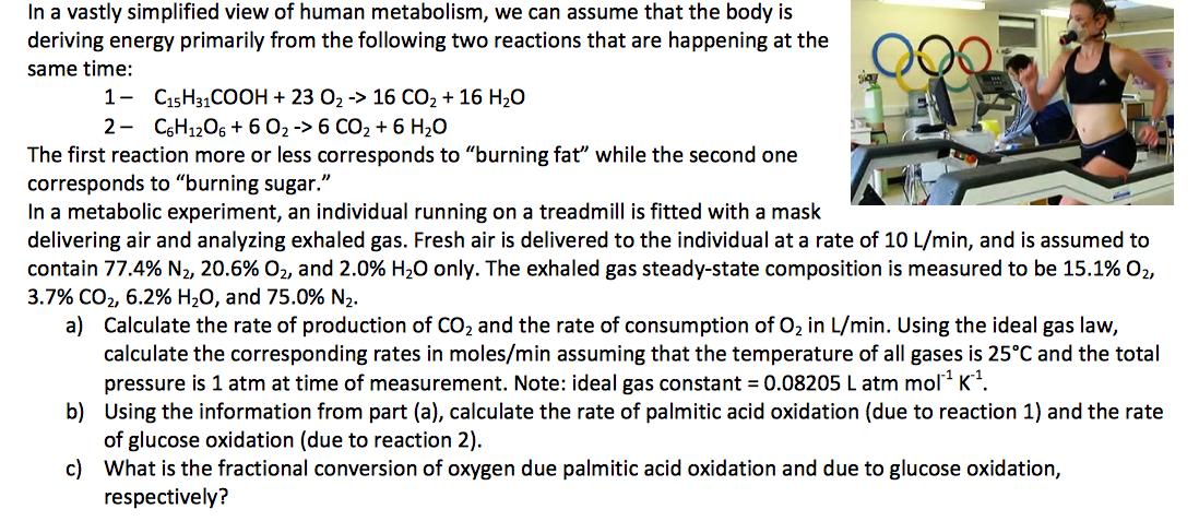 Writing homework help gas mask
